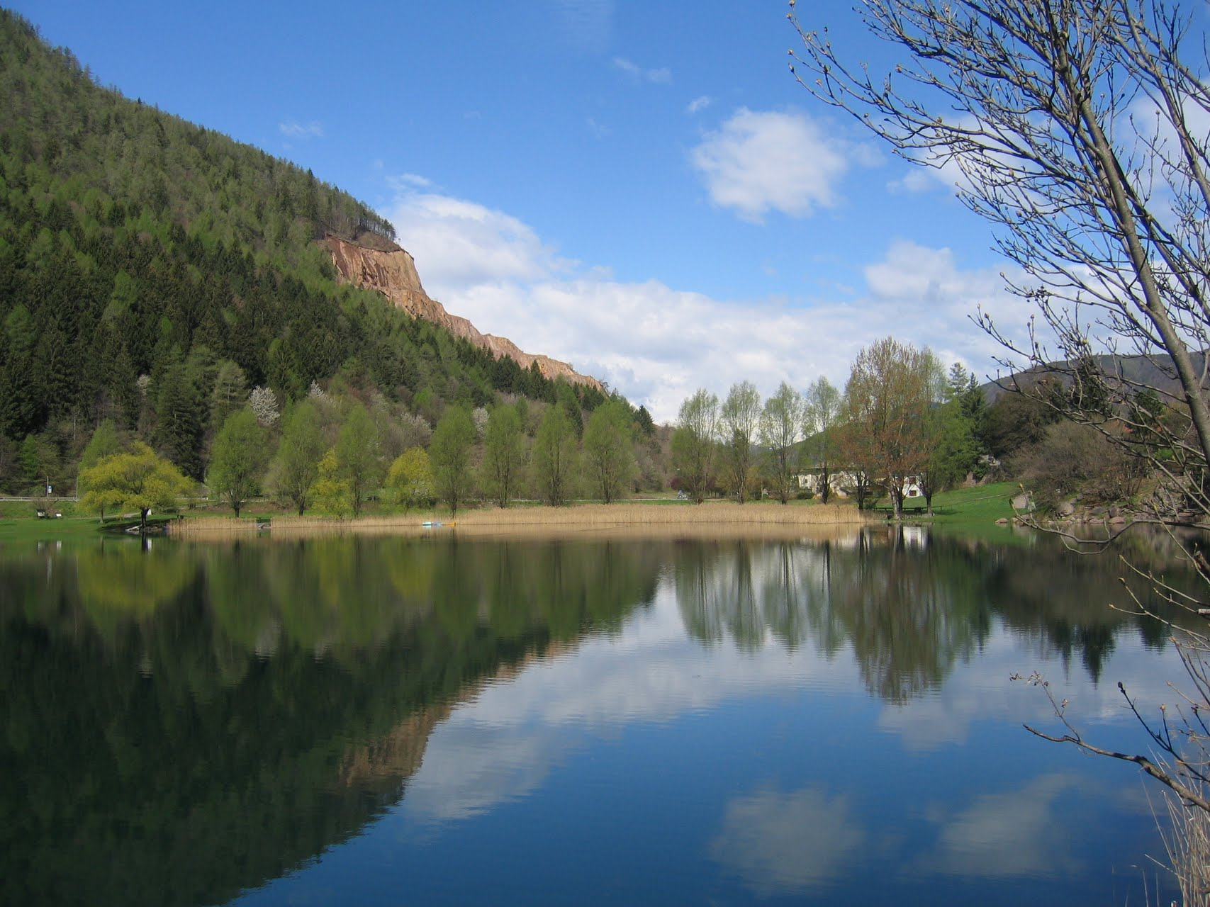 Lago di Lases with reinstated forest